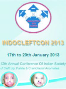 INDOCLEFTCON 2013